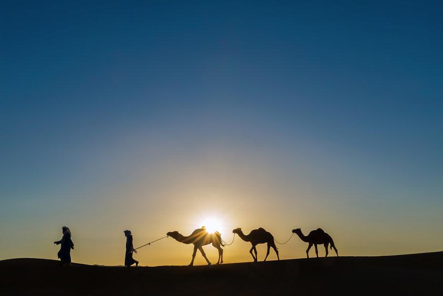 Passeio De Camelo No Deserto - Aventura Nas Dunas Do Saara