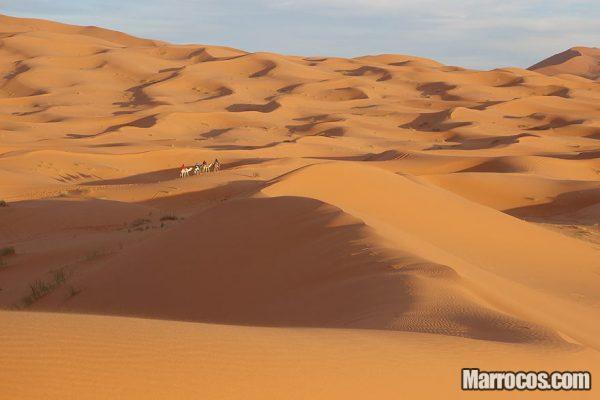 Tour de 5 Dias – Marraquexe até Deserto do Saara