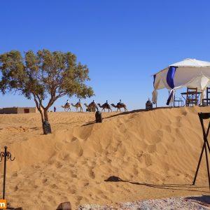 Passagem De Ano Em Marrocos (6)
