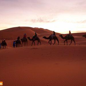Passagem De Ano Em Marrocos (7)