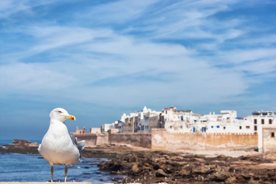 12 Dias Em Marrocos – Tour Grande Volta Marroquina