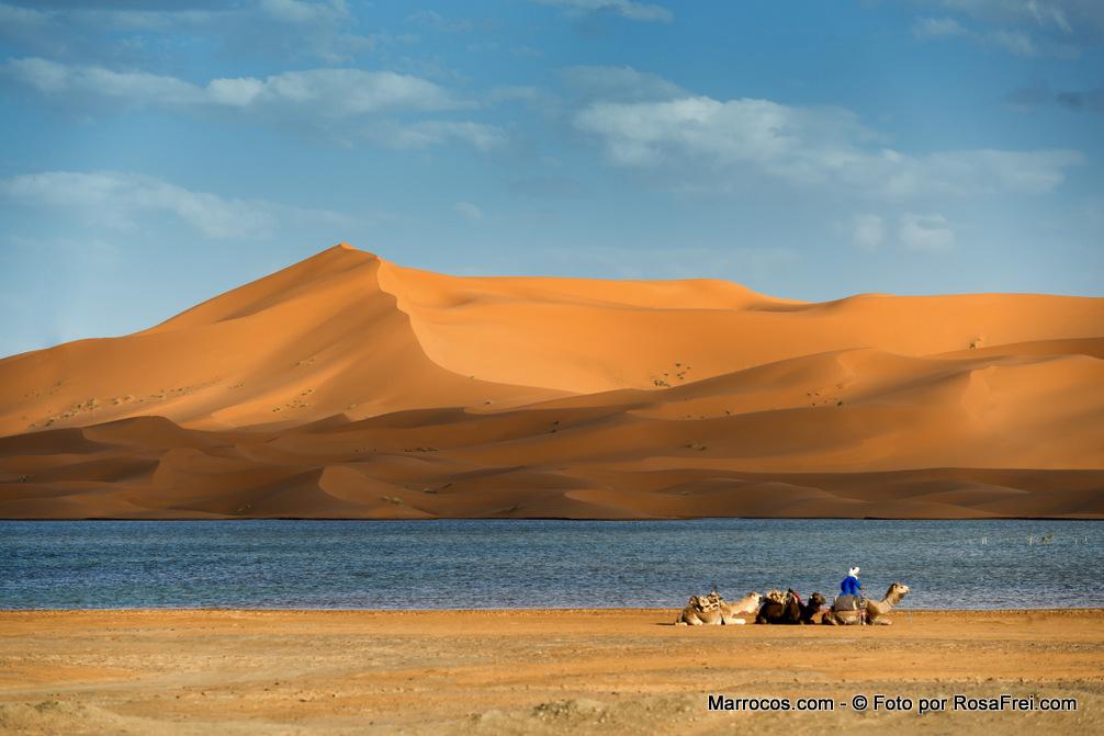 Fotos de Marrocos Deserto do Saara Marrocos 2 Fotografias de Marrocos