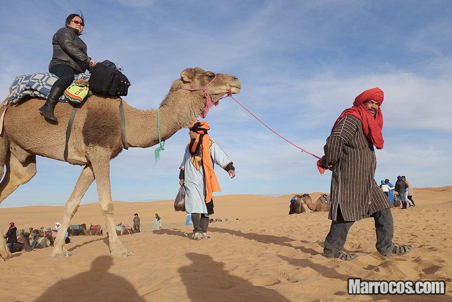 Excursão de camelo no Deserto do Saara