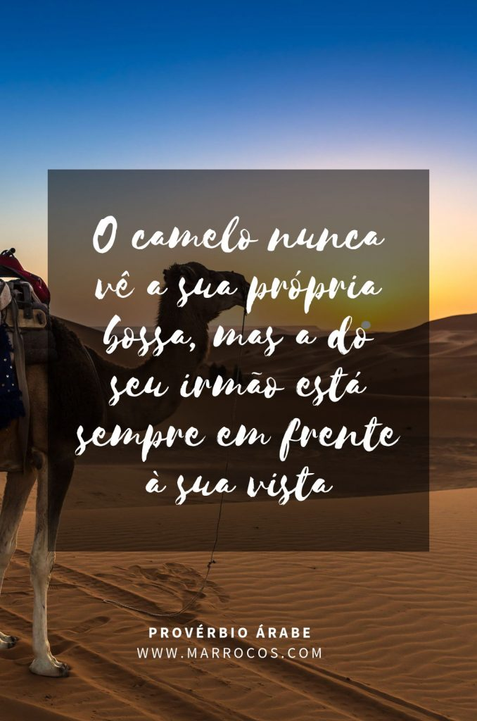 O camelo nunca vê a sua própria bossa, mas a do seu irmão está sempre em frente à sua vista