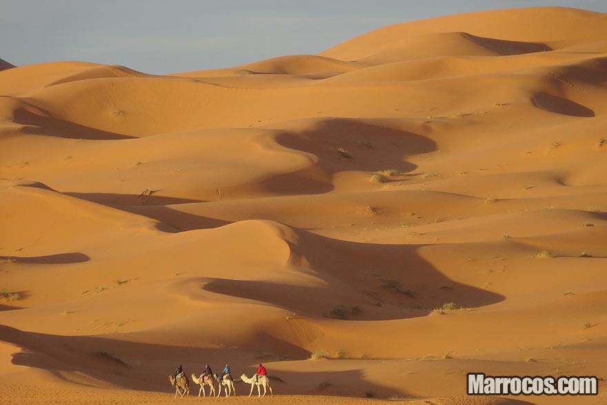 Passeio de Camelo no Deserto, Marrocos