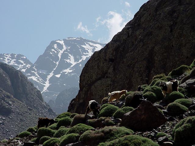 Parque Nacional de Toubkal Marrocos