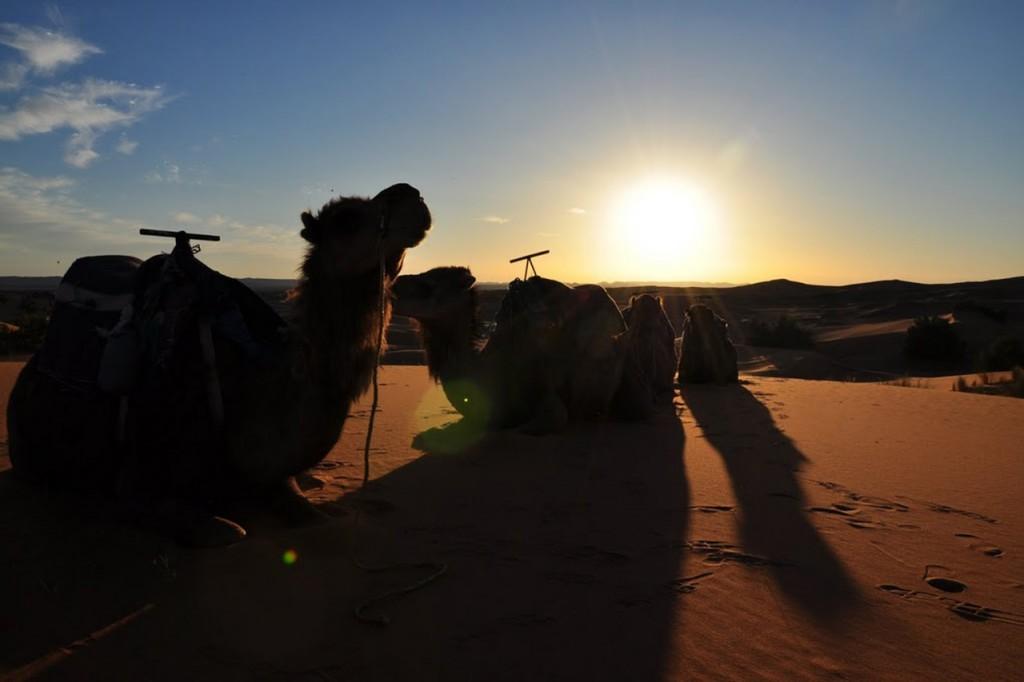 8 Dias » Circuito Ano Novo no Deserto
