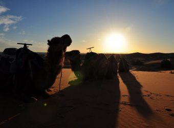 Passagem do Ano Marrocos